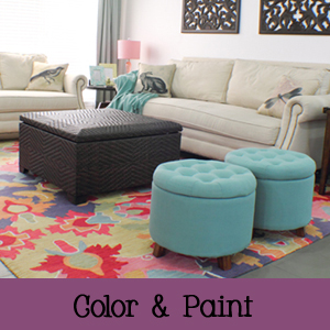Color and Paint Home Design Ideas